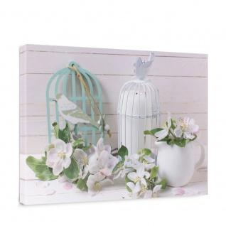 Leinwandbild Vogel Vogelkäfig Haus Holz Bretter Blüten Vase   no. 4595
