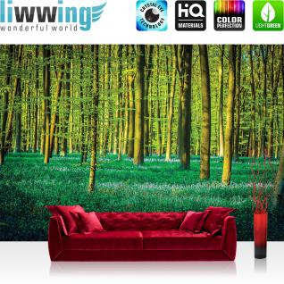 liwwing Vlies Fototapete 208x146cm PREMIUM PLUS Wand Foto Tapete Wand Bild Vliestapete - Natur Tapete Wald Natur Bäume Wiese grün - no. 1333