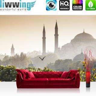 liwwing Vlies Fototapete 400x280 cm PREMIUM PLUS Wand Foto Tapete Wand Bild Vliestapete - Stadt Istanbul Türkei - no. 250