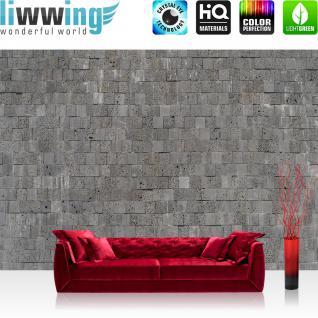 liwwing Vlies Fototapete 350x245 cm PREMIUM PLUS Wand Foto Tapete Wand Bild Vliestapete - Steinwand Tapete Steinmauer Steinwand Steinoptik grau - no. 695