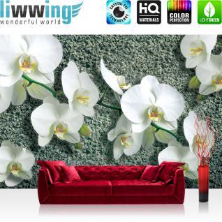 liwwing Vlies Fototapete 312x219cm PREMIUM PLUS Wand Foto Tapete Wand Bild Vliestapete - Orchideen Tapete Orchidee Stein Pflanzen Blumen Natur grau - no. 3102
