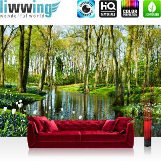 liwwing Vlies Fototapete 350x245 cm PREMIUM PLUS Wand Foto Tapete Wand Bild Vliestapete - Wald Bäume Natur - no. 256