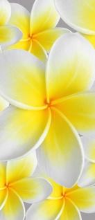 Türtapete - Blüten Orchidee | no. 274 - Vorschau 5