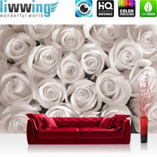 liwwing Vlies Fototapete 312x219cm PREMIUM PLUS Wand Foto Tapete Wand Bild Vliestapete - Blumen Tapete Rosen Natur Pflanzen weiß - no. 1232