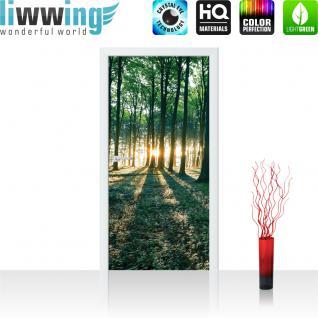 liwwing Vlies Türtapete 91x211 cm PREMIUM PLUS Tür Fototapete Türposter Türpanel Foto Tapete Bild - Sonnenuntergang Wald Bäume Wiese - no. 641