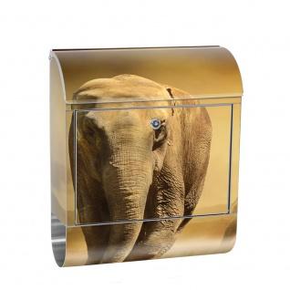 Edelstahl Wandbriefkasten XXL mit Motiv & Zeitungsrolle | Afrika Savanne Elefanten Gras Landschaft | no. 0011