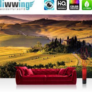 liwwing Vlies Fototapete 350x245 cm PREMIUM PLUS Wand Foto Tapete Wand Bild Vliestapete - Landschaft Tapete Feld Bäume Weg Abenddämmerung Panorama gelb - no. 452