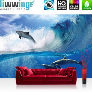 liwwing Vlies Fototapete 350x245 cm PREMIUM PLUS Wand Foto Tapete Wand Bild Vliestapete - Meer Tapete Delfin Meer Welle Tropfen Sonne Wasser blau - no. 531