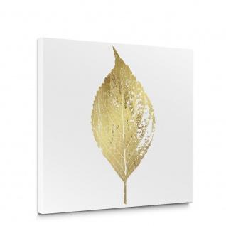 Leinwandbild Blätter Abstrakt Erle Kunst | no. 5714