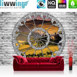 liwwing Fototapete 368x254 cm PREMIUM Wand Foto Tapete Wand Bild Papiertapete - Steinwand Tapete Stein Steinoptik Steine Fenster Landschaft Feld Bäume grau - no. 1493