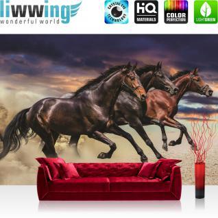 liwwing Fototapete 368x254 cm PREMIUM Wand Foto Tapete Wand Bild Papiertapete - Tiere Tapete Pferde Tiere Sand Himmel ocker - no. 2620
