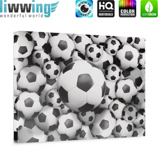 Leinwandbild Fussbälle Sport Soccer Fussball WM Football | no. 977 - Vorschau 5