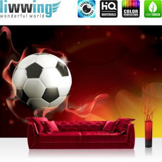 liwwing Vlies Fototapete 350x245 cm PREMIUM PLUS Wand Foto Tapete Wand Bild Vliestapete - Fußball Tapete Fussball Fahne Deutschland Kunst Nationalmannschaft bunt - no. 980