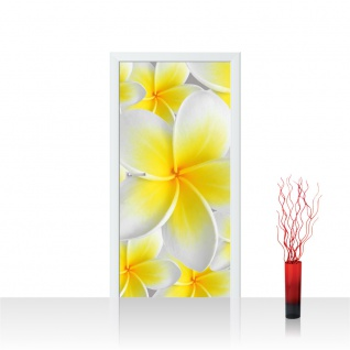 Türtapete - Blüten Orchidee | no. 274