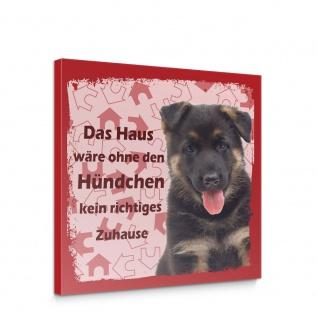 Leinwandbild Schäferhund Haustiere Hunde Tiere   no. 5490