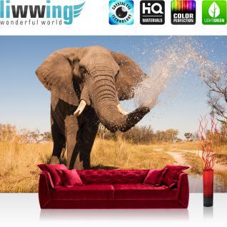 liwwing Vlies Fototapete 208x146cm PREMIUM PLUS Wand Foto Tapete Wand Bild Vliestapete - Afrika Tapete Elefant Wasser Teich Afrika braun - no. 1295