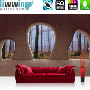 liwwing Vlies Fototapete 312x219cm PREMIUM PLUS Wand Foto Tapete Wand Bild Vliestapete - Architektur Tapete Wald Bäume Nebel Herbst Natur Baustil Bauform braun - no. 1510
