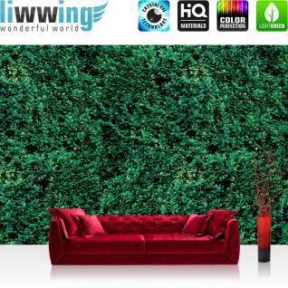 liwwing Fototapete 368x254 cm PREMIUM Wand Foto Tapete Wand Bild Papiertapete - Texturen Tapete Blätter Pflanzen Dschungel Wald grün - no. 2666