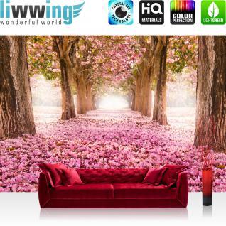 liwwing Vlies Fototapete 400x280 cm PREMIUM PLUS Wand Foto Tapete Wand Bild Vliestapete - Herbstblätter Wald Bäume Baum Forest Herbst - no. 151