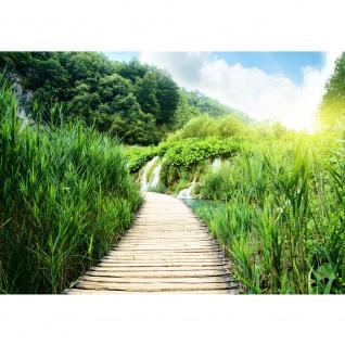 Fototapete Wood Way in Deep Forest Natur Tapete Holz Weg Grün Feld Natur Landschaft Gras grün | no. 93
