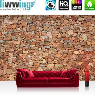 liwwing Vlies Fototapete 350x245 cm PREMIUM PLUS Wand Foto Tapete Wand Bild Vliestapete - Steinwand Steine Wand - no. 156