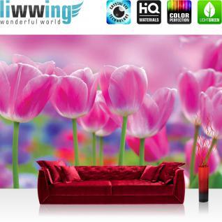 liwwing Vlies Fototapete 312x219cm PREMIUM PLUS Wand Foto Tapete Wand Bild Vliestapete - Blumen Tapete Tulpen Natur rosa - no. 3562