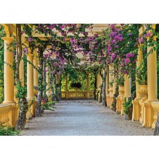 Fototapete Architektur Tapete Säulengang, Garten, mediterran, Flieder natural | no. 3531