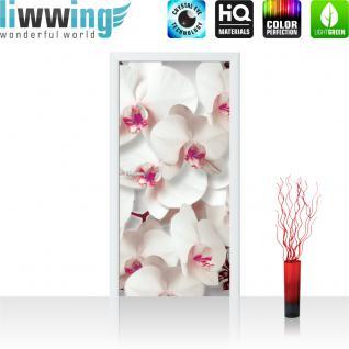 liwwing Türtapete selbstklebend 91x211 cm PREMIUM PLUS Tür Fototapete Türposter Türpanel Foto Tapete Bild - Orchideen Blüten Pflanze - no. 320