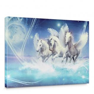 Leinwandbild Pegasus Wasser Mond Sterne gelb Illustration Foto   no. 1077