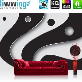 liwwing Fototapete 368x254 cm PREMIUM Wand Foto Tapete Wand Bild Papiertapete - 3D Tapete Abstrakt Streifen Kreise Fächer Design Kunst Muster 3D schwarz - weiß - no. 809