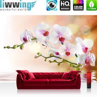 liwwing Vlies Fototapete 350x245 cm PREMIUM PLUS Wand Foto Tapete Wand Bild Vliestapete - Blumen Orchidee Natur - no. 200