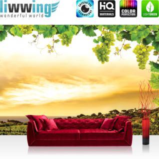 liwwing Vlies Fototapete 312x219cm PREMIUM PLUS Wand Foto Tapete Wand Bild Vliestapete - Landschaft Tapete Landschaft Weinberge Weintrauben Blätter Natur Wolken grün - no. 1498