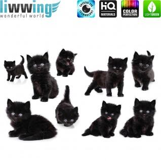 Wandsticker - No. 4753 Wandtattoo Sticker Katze Kätzchen Welpe Katzenbabys Hauskatze