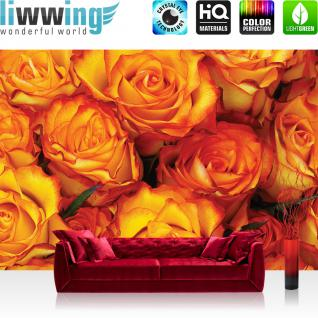 liwwing Fototapete 368x254 cm PREMIUM Wand Foto Tapete Wand Bild Papiertapete - Blumen Tapete Rose Blumen Blüte Liebe Rosen orange - no. 984