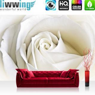 liwwing Vlies Fototapete 300x210 cm PREMIUM PLUS Wand Foto Tapete Wand Bild Vliestapete - Blumen Tapete Rose Blumen Blüte weiß edel weiß - no. 1099