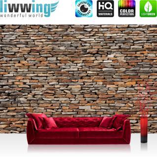 liwwing Vlies Fototapete 400x280 cm PREMIUM PLUS Wand Foto Tapete Wand Bild Vliestapete - Steinwand Steinoptik Steine Wand Mauer Steintapete - no. 158