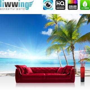 liwwing Vlies Fototapete 312x219cm PREMIUM PLUS Wand Foto Tapete Wand Bild Vliestapete - Strand Tapete Palme Meer Wolken Sonne Schatten Karibik blau - no. 2444