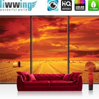 liwwing Vlies Fototapete 312x219cm PREMIUM PLUS Wand Foto Tapete Wand Bild Vliestapete - Natur Tapete Feld Heuballen Wolken Himmel Sonnenuntergang orange - no. 2936