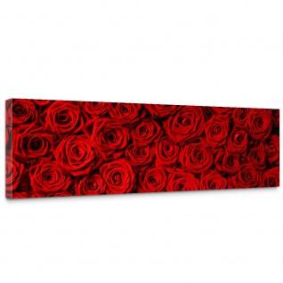 Leinwandbild Blumen Rose Blüten Natur Liebe Love Blüte Rot | no. 190