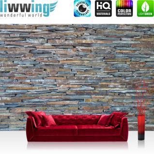 liwwing Vlies Fototapete 400x280 cm PREMIUM PLUS Wand Foto Tapete Wand Bild Vliestapete - Steinwand Steine Wand - no. 160
