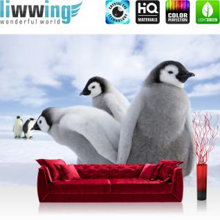liwwing Fototapete 368x254 cm PREMIUM Wand Foto Tapete Wand Bild Papiertapete - Tiere Tapete Pinguine Tiere Schnee Himmel weiß - no. 2658