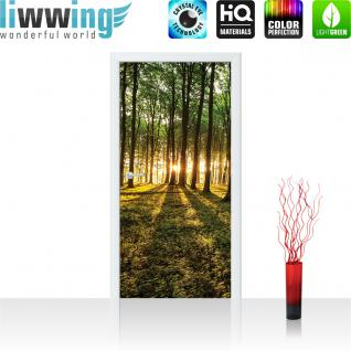 liwwing Türtapete selbstklebend 91x211 cm PREMIUM PLUS Tür Fototapete Türposter Türpanel Foto Tapete Bild - Wald Bäume Sonne Schatten - no. 928