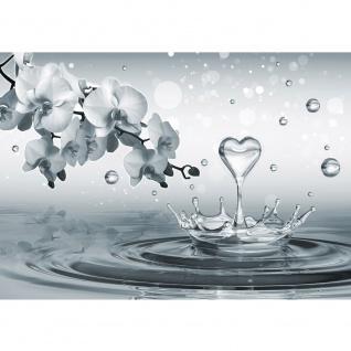 Fototapete Wasser Tapete Herz Wasser Splash Orchideen grau   no. 1772