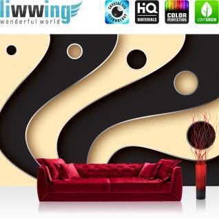 liwwing Vlies Fototapete 200x140 cm PREMIUM PLUS Wand Foto Tapete Wand Bild Vliestapete - 3D Tapete Abstrakt Streifen Kreise Fächer Design Kunst Muster 3D schwarz - no. 808