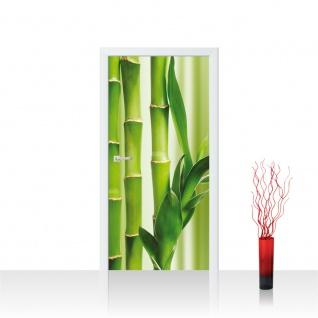 Türtapete - Bambus Blätter Wald   no. 539