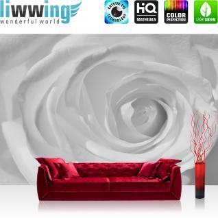 liwwing Fototapete 368x254 cm PREMIUM Wand Foto Tapete Wand Bild Papiertapete - Blumen Tapete Rose Pflanzen romantisch Wellness weiß - no. 3159