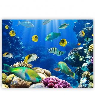 Leinwandbild Underwater World Aquarium Unterwasser Meer Fische Riff Korallenriff | no. 33 - Vorschau 2