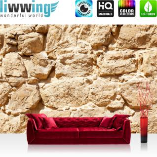 liwwing Vlies Fototapete 400x280 cm PREMIUM PLUS Wand Foto Tapete Wand Bild Vliestapete - ROCK STONE WALL - Steinwand Steintapete Wand Wall Beige Felsen Große Steine - no. 025