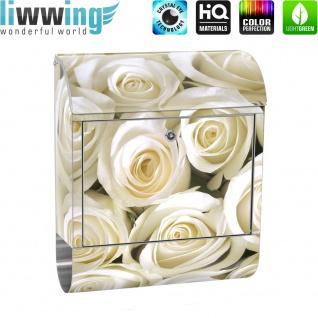 Edelstahl Wandbriefkasten XXL mit Motiv & Zeitungsrolle | Blumen Rose Blüten Natur Liebe Love Blüte Weiß | no. 0184 - Vorschau 2
