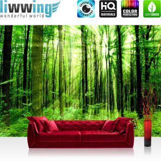 liwwing Vlies Fototapete 300x210 cm PREMIUM PLUS Wand Foto Tapete Wand Bild Vliestapete - SUNLIGHT FOREST - Wald Bäume Sonnenstrahlen grün Ruhe - no. 061